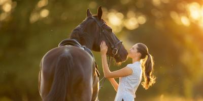 Tofi Horses – niemelasowane wysłodki buraczane | Podstawowe informacje